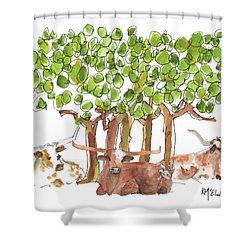 Longhorns In The Shade Lh015 By Kmcelwaine Shower Curtain