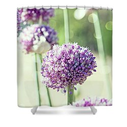 Shower Curtain featuring the photograph Longing For Summer Days by Linda Lees
