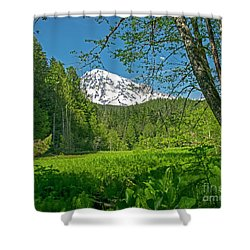 Longmire Meadows 0761 Shower Curtain