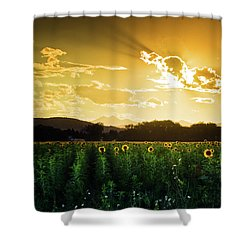 Shower Curtain featuring the photograph Longmont Summer Skies 2 by John De Bord