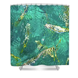 Looe Key Reef Shower Curtain by Charles Harden