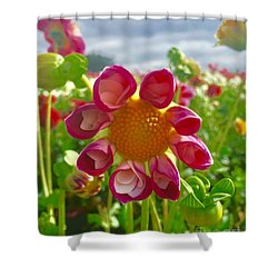 Look At Me Dahlia Shower Curtain