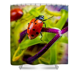 Shower Curtain featuring the photograph Look At The Colors Over There. by TC Morgan