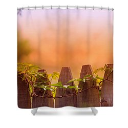 Shower Curtain featuring the photograph Look Beyond The Boundary by Rima Biswas
