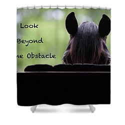 Look Beyond The Obstacle Shower Curtain