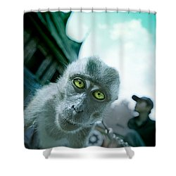Look Into My Eyes Shower Curtain