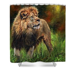 Shower Curtain featuring the painting Look Of The Lion by David Stribbling