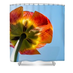 Look To The Source Shower Curtain