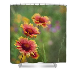 Look...a Flower Shower Curtain