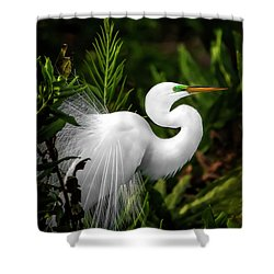 Lookin' For Love Shower Curtain