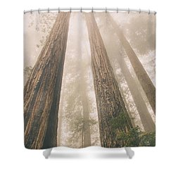 Looking At Giants Shower Curtain