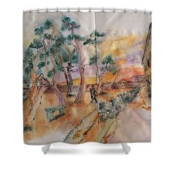 Looking At Van Gogh Album Shower Curtain