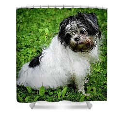 I Was Not In The Dirt Again.... Shower Curtain