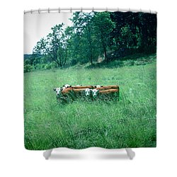 Shower Curtain featuring the photograph Looking Back by Peter Simmons