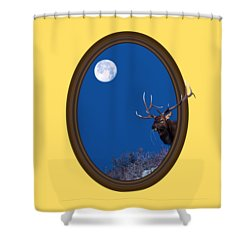 Looking Beyond Shower Curtain