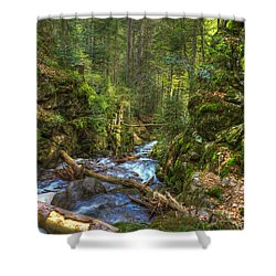 Looking Down The Gorge Shower Curtain