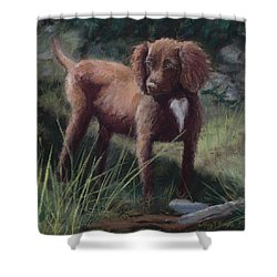 Looking For Adventure Shower Curtain by Mary Benke