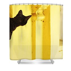 Looking For Mouse Shower Curtain