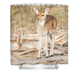 Looking For Mum Shower Curtain