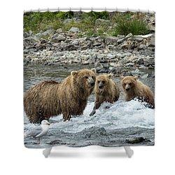 Looking For Sockeye Salmon Shower Curtain