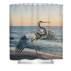 Looking For Supper Shower Curtain by Brian Tarr