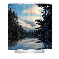 Looking Glass Shower Curtain by Elfriede Fulda