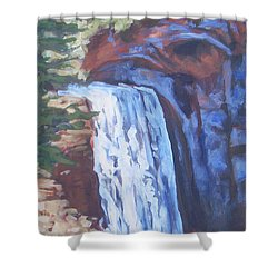 Looking Glass Falls Shower Curtain by Carol Strickland