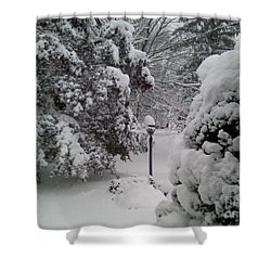 Looking Out My Front Door Shower Curtain by Carol Wisniewski