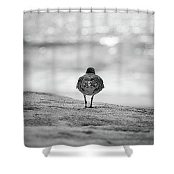 Looking Out To Sea Shower Curtain