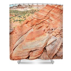 Shower Curtain featuring the photograph Looking South In Valley Of Fire by Ray Mathis