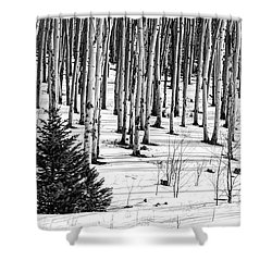 Looking Through The Aspen Black And White Shower Curtain