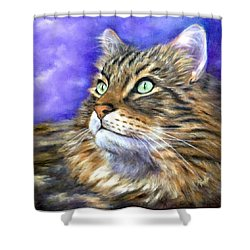Looking To The Rainbow Bridge Shower Curtain