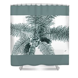 Shower Curtain featuring the photograph Looking Up At Palm Tree Green by Ben and Raisa Gertsberg