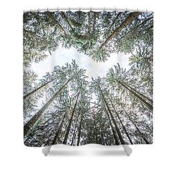 Shower Curtain featuring the photograph Looking Up In The Forest by Hannes Cmarits