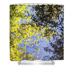 Shower Curtain featuring the photograph Looking Up Or Down by Heidi Smith