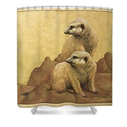 Lookouts Shower Curtain by James W Johnson