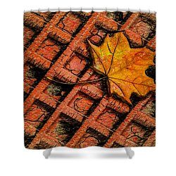 Looks Like Another Leaf Shower Curtain by Paul Wear