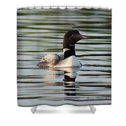Loon 1 Shower Curtain