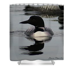 Loon 2 Shower Curtain