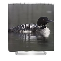 Loon 4 Shower Curtain
