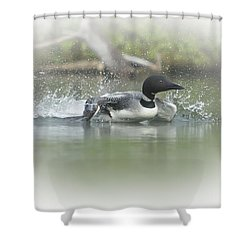 Loon 6 Shower Curtain