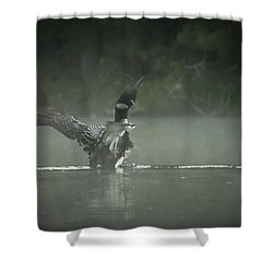 Loon 7 Shower Curtain