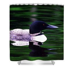 Loon On The Lake Shower Curtain by Rick Frost