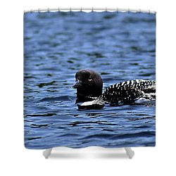 Loon Pan Shower Curtain