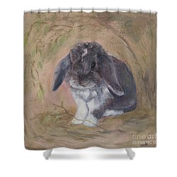 Lop Eared Rabbit- Socks Shower Curtain
