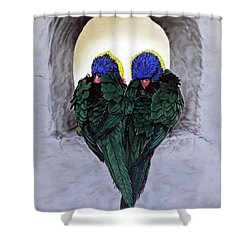 Lorikeets Shower Curtain