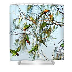 Lorikeets Swarming From Tree To Tree Shower Curtain