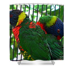 Shower Curtain featuring the photograph Lory by Greg Patzer