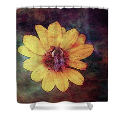 Lost Autumn Veterans 5670 Ldp_2 Shower Curtain