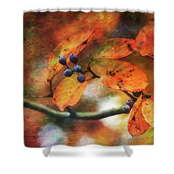 Lost Autumns Beauty 6570 Ldp_2 Shower Curtain